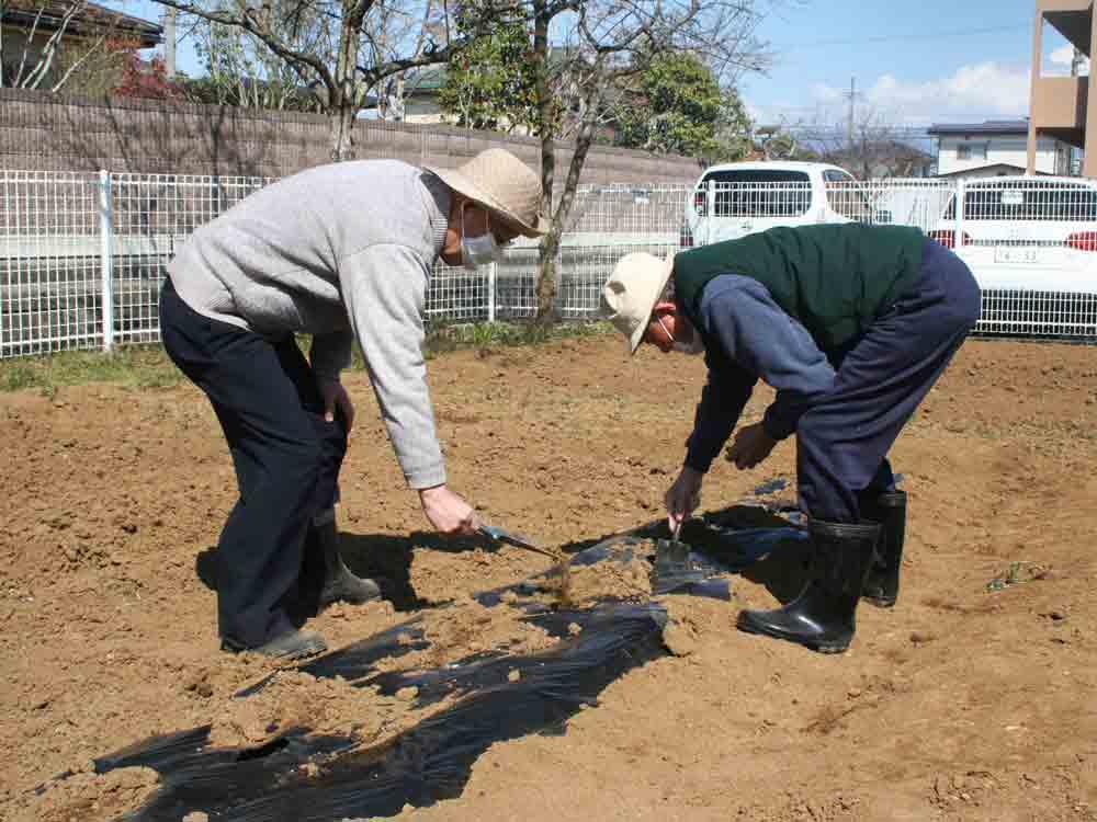 ジャガイモの植え付け作業中の2名の利用者